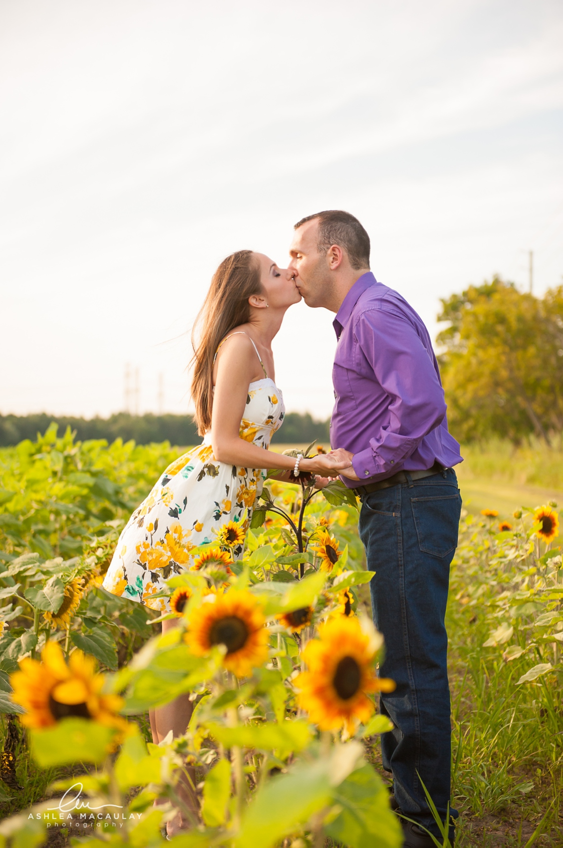 Sunflower Engagement Whitby