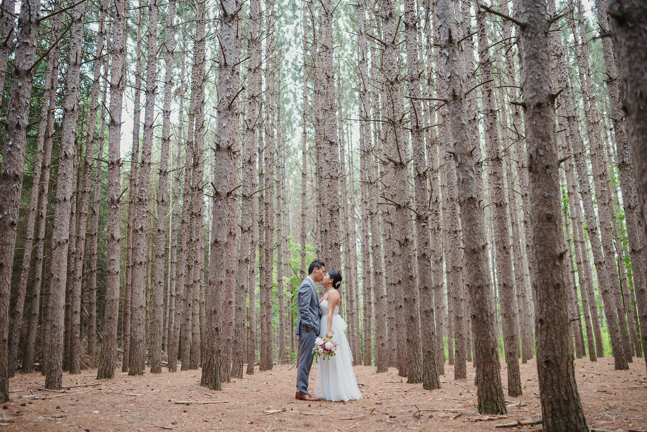 Kortright Centre Wedding bride and groom in tall pines